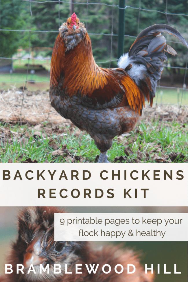 Backyard Chickens Record Keeping Kit