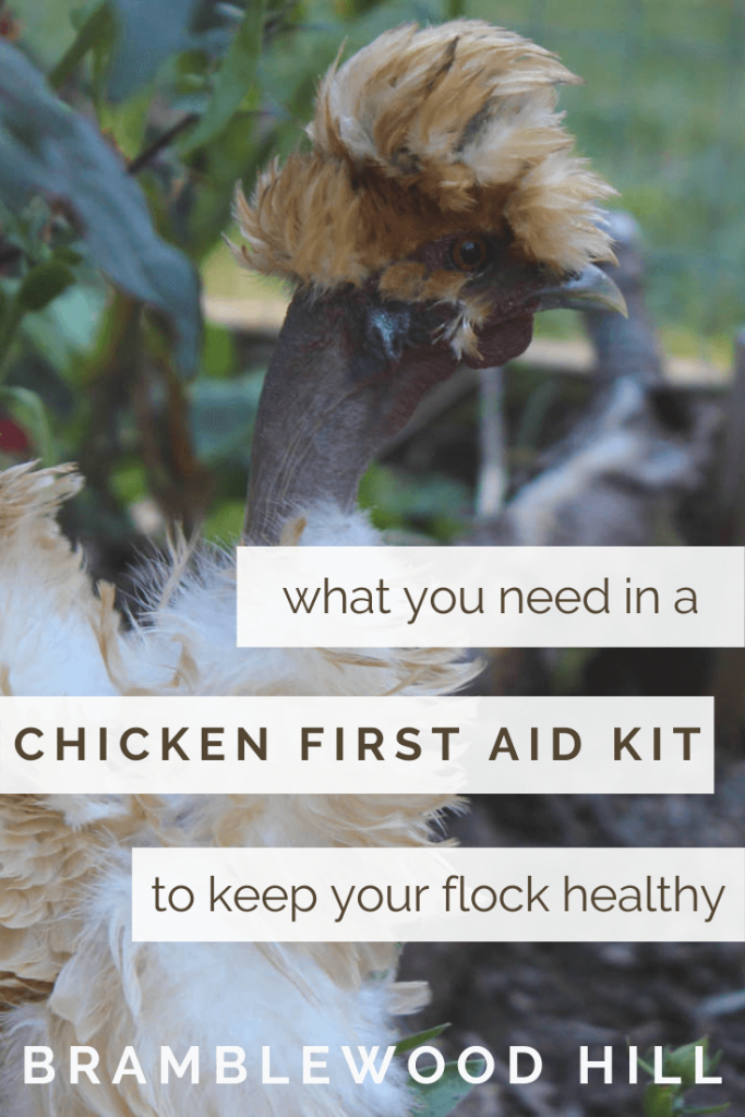 Every chicken owner should have a first aid kit ready for their flock, just in case. Learn what you need to keep your flock healthy and happy. Or Pin this for later!