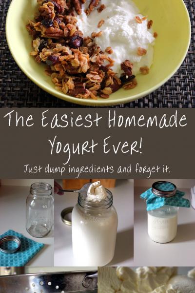 Seriously the easiest way to make homemade yogurt! No yogurt maker or special equipment needed.