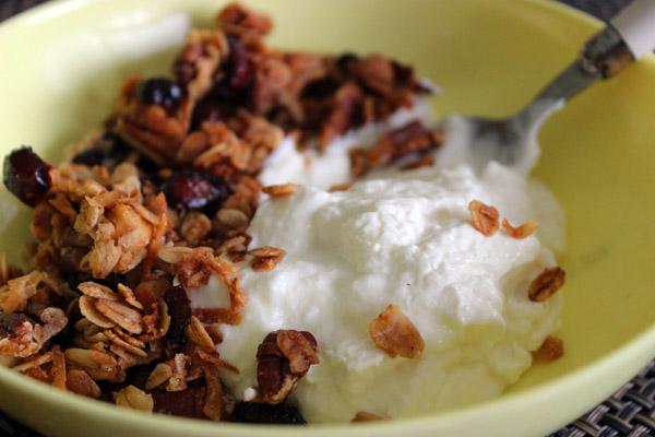 Granola and yogurt in a bowl.